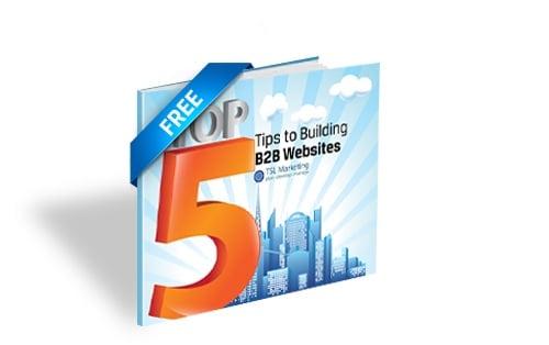 B2B Website Build