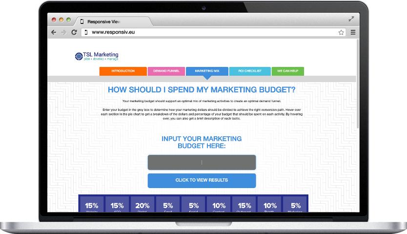 marketing budget screenshot