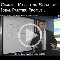 Channel Marketing Strategy - Ideal Partner Profile for Net New Business